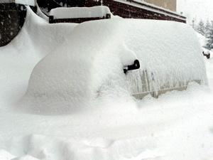 Snow_van