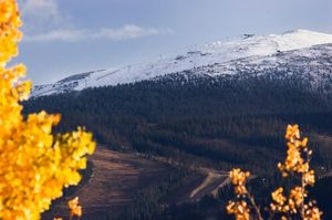 Looks like the Pano is shaping up nicely. Top of the Jane got some snow too! Winter Park