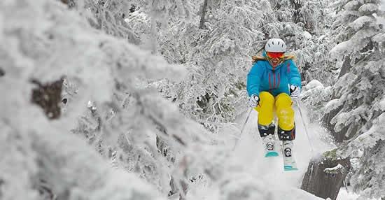 Skishow1