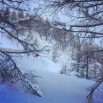 Powder_snowboarder